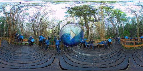 Bosque Los Arrayanes em panorâmica 360°